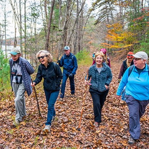 A group of senior citizens on a trail walk